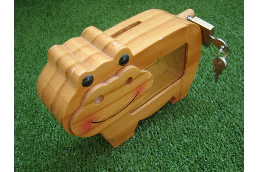 for Large piggy bank with lock