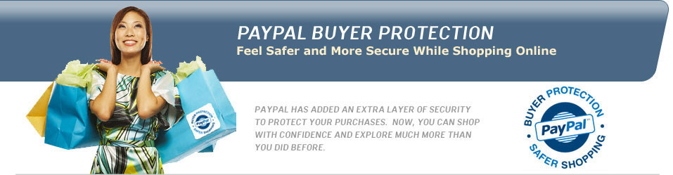 Secure Payments - How to use PayPal